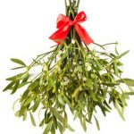 Mistletoe Coffee